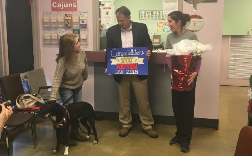 Lafayette Mayor-President Joel Robideaux announced record-breaking 1,000 adoptions for Lafayette Animal Shelter and Care Center (LASCC) for 2018, as well as progress on the No Kill 2020 initiative.
