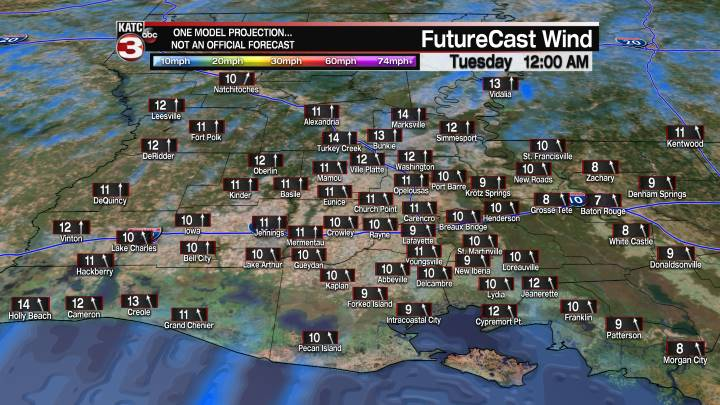 Acadiana 12 Hour Wind Forecast