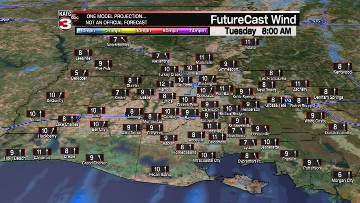 Acadiana 19 Hour Wind Forecast