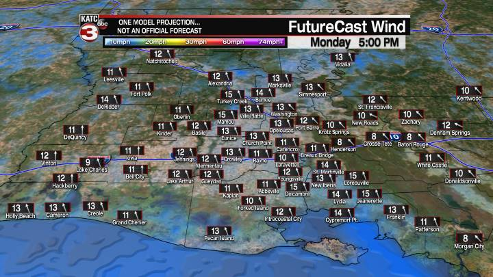 Acadiana 5 Hour Wind Forecast