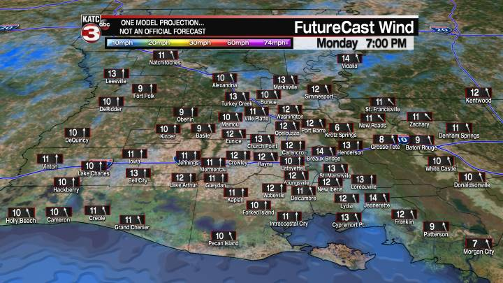 Acadiana 7 Hour Wind Forecast
