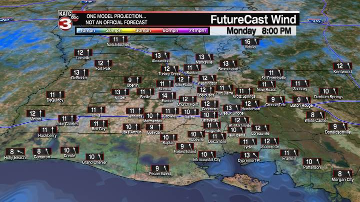 Acadiana 8 Hour Wind Forecast