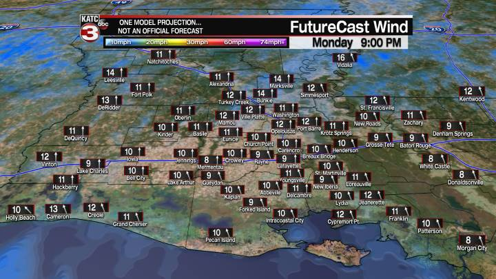 Acadiana 9 Hour Wind Forecast